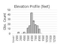 Hoary Marmot - Montana Field Guide